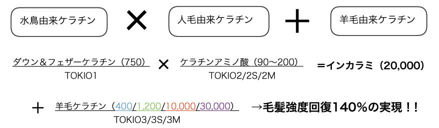 TOKIO-INKARAMI資料3
