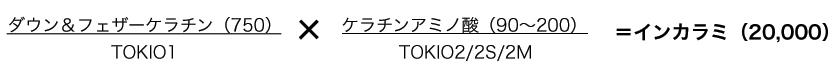 TOKIO-INKARAMI資料2
