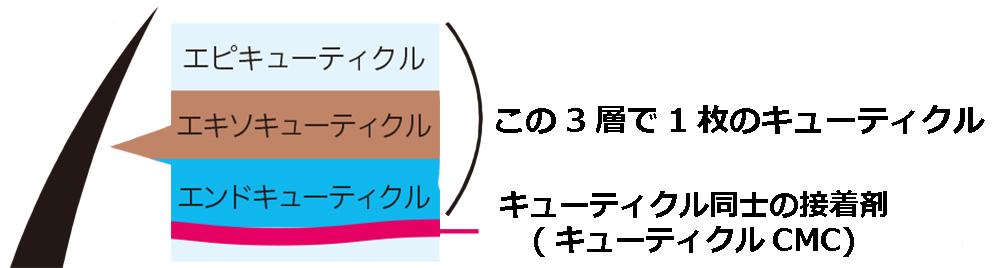 HOGOSUI,ホゴスイ,コスメイカー