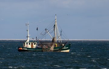 レボ,釣り部,漁師,釣り,仕事,海,釣りのメッシュ,夜明け